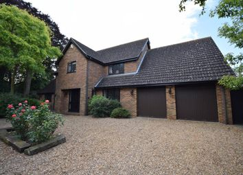 Thumbnail 4 bedroom property to rent in Paget Close, Great Houghton, Northampton