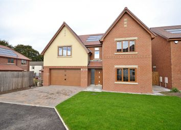 Thumbnail 5 bed detached house for sale in The Duxbury, Springfield Gardens, Euxton