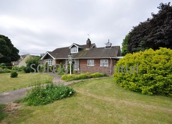Thumbnail 3 bed detached bungalow to rent in Maple Drive, Nuthall, Nottingham