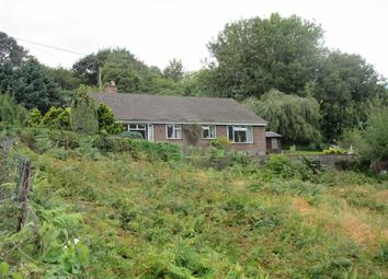 Thumbnail 3 bed detached bungalow to rent in Camomile Green, Lydbrook