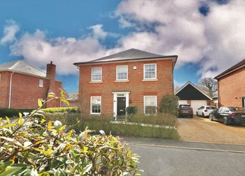 Thumbnail 4 bed detached house for sale in Sowdlefield Walk, Mulbarton, Norwich