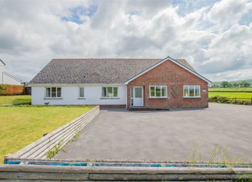 Thumbnail 3 bed detached bungalow for sale in Crugybar, Llanwrda, Carmarthenshire