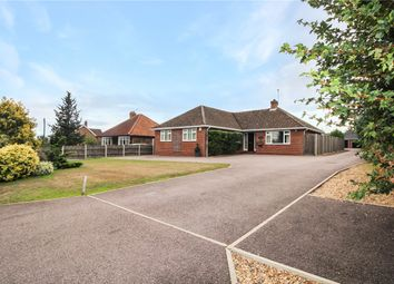 Thumbnail 3 bed detached bungalow for sale in Ashby Road, Thurton, Norwich, Norfolk