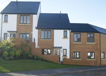 Thumbnail 3 bedroom terraced house for sale in Little Marsh Road, Okehampton