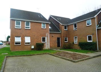 Thumbnail Studio to rent in Roth Drive, Hutton, Brentwood