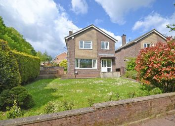 Thumbnail 4 bedroom detached house for sale in Detached Family House, Claremont, Newport