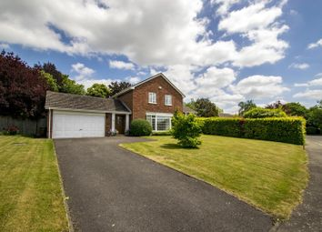 Thumbnail 4 bed detached house for sale in Whitehills Green, Goring On Thames, Reading