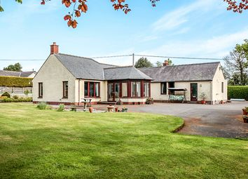 Thumbnail 3 bed bungalow for sale in Hardthorn Road, Dumfries