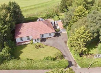 Thumbnail 4 bed detached bungalow for sale in Dalbeattie Road, Dumfries