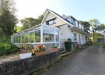 Thumbnail 4 bed semi-detached house for sale in Cefnllwyd, Capel Dewi, Aberystwyth