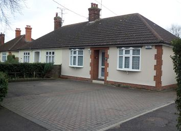 Thumbnail 2 bed bungalow to rent in The Avenue, Witham