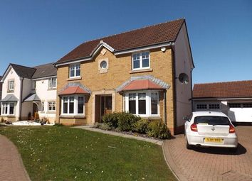Thumbnail 4 bedroom detached house to rent in Dunbeath Grove, Blantyre, Glasgow