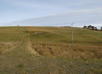Thumbnail Land for sale in Heights Of Dochcarty, Dingwall, Dingwall