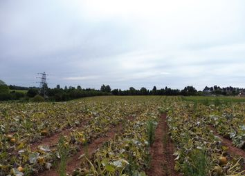 Thumbnail Land for sale in 4 Acres Hartlebury, Kidderminster, Worcestershire