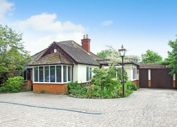Thumbnail 4 bed bungalow for sale in Saunders Lane, Hook Heath, Woking