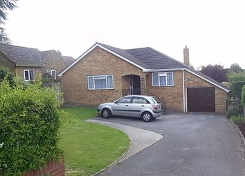 3 bed bungalow to rent in Crays Hill, Billericay CM11
