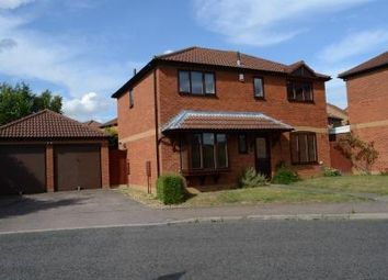 Thumbnail 4 bedroom detached house to rent in Tamworth Stubb, Walnut Tree