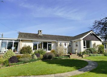 Thumbnail 4 bed detached bungalow for sale in Studley Hill, Studley, Calne