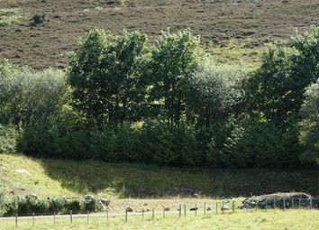 Thumbnail Land for sale in Plot At 66 Dalmore, Rogart