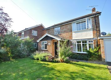 Thumbnail 3 bedroom detached house to rent in The Street, High Easter, Chelmsford