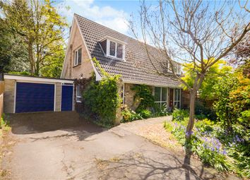 Thumbnail 4 bedroom detached bungalow for sale in Church Avenue, Farnborough, Hampshire