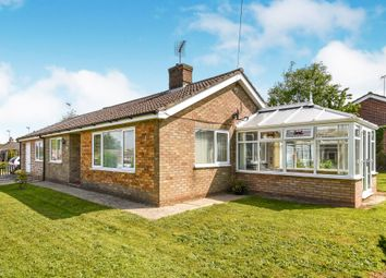 4 bed detached bungalow for sale in Hardy Close, Downham Market PE38