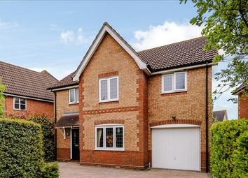 Thumbnail 4 bed detached house for sale in Ridgewell Avenue, Chelmsford