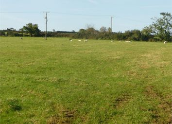 Thumbnail Land for sale in Llanychaer, Fishguard