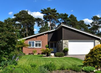 Thumbnail 3 bed bungalow for sale in Gainsborough Road, Ashley Heath, Ringwood
