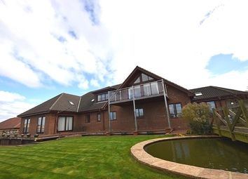 Thumbnail 6 bed property to rent in Wrights Way, Burnhope, Durham