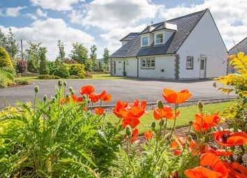Thumbnail 4 bed detached house for sale in Beeswing, Dumfries