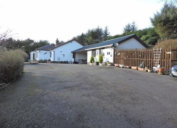 Thumbnail 4 bedroom detached bungalow for sale in Porthyrhyd, Llanwrda