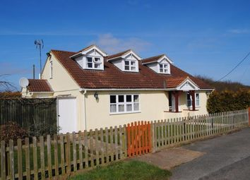 Thumbnail 4 bed detached house for sale in Tydd Gote, Wisbech, Cambridgeshire