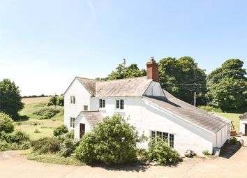 Thumbnail 5 bed equestrian property for sale in Beaminster, Dorset