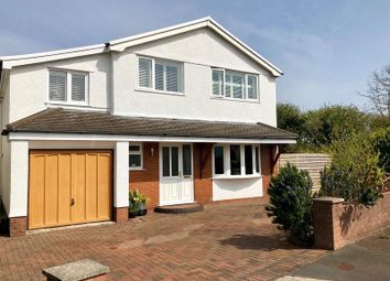 Thumbnail 4 bedroom detached house for sale in Picket Mead Road, Newton, Swansea, West Glamorgan.