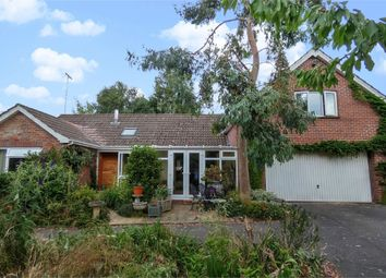 Thumbnail 6 bed detached bungalow for sale in Slade Road, Ottery St Mary, Devon