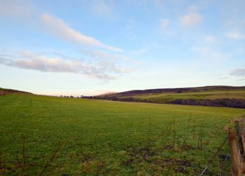 Thumbnail Land for sale in Croft At Smerral, Latheron