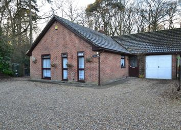 Thumbnail 3 bed detached bungalow for sale in Hampstead Norreys Road, Hermitage, Berkshire