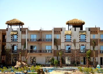 Thumbnail Studio for sale in C-230-03-S, Hurghada, Egypt