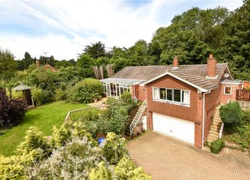 Thumbnail 4 bed detached house for sale in Knowl Hill Common, Knowl Hill, Reading