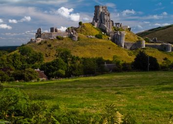 Thumbnail 5 bed country house for sale in Corfe Castle, Corfe Castle