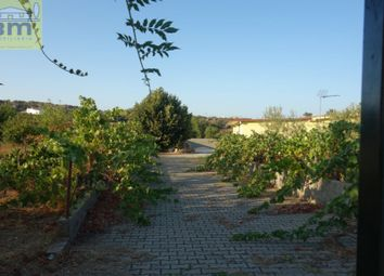 Thumbnail 1 bed country house for sale in Castelo Branco, Castelo Branco, Castelo Branco