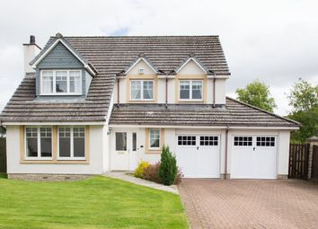 Thumbnail 4 bedroom detached house for sale in The Glebe, Liff