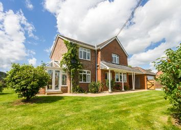 Thumbnail 3 bed detached house for sale in Fritham, New Forest, Hampshire
