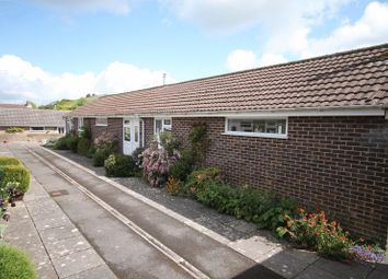 Thumbnail 2 bed semi-detached bungalow to rent in Abbots Walk, Cerne Abbas