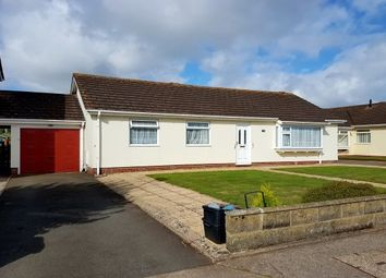 Thumbnail 3 bed bungalow to rent in Hookhills Road, Paignton