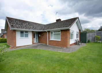 Thumbnail 4 bed bungalow for sale in Upper Drove, Andover