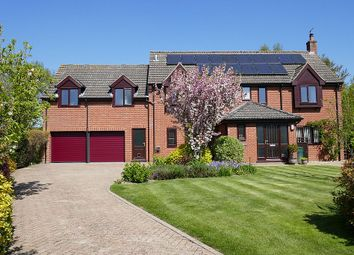Thumbnail 6 bed detached house for sale in Orchard Close, Barford, Norfolk