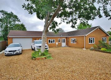 Thumbnail 4 bed detached bungalow for sale in Willows Close, Tydd St. Mary, Wisbech