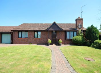 Thumbnail 3 bedroom detached house for sale in Danesmead Close, York